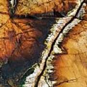 Rock Detail, Killarney Provincial Park Poster