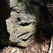 Rock Face Poster by Joel Deutsch
