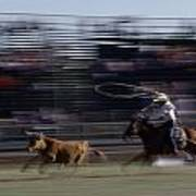 Rodeo Cowboy Trying To Lasso A Running Poster by Chris Johns