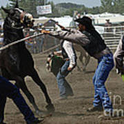 Rodeo Wild Horse Race Poster