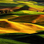 Rolling Hills Of Palouse Poster