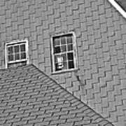 Roof Lines Poster