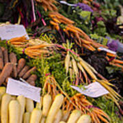 Root Vegetables At The Market Poster