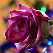 Rose Celebration Poster by Bill Tiepelman