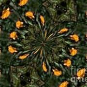 Rose Kaleidoscopic  Poster