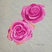 Rose Study Poster