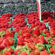 Rows Of Berries At Market Poster