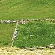 Ruins Of Irish Chieftains House Near Moll Gap Ireland Poster