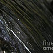 Running Ribbon Water Poster