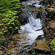 Rushing Water On Mt Spokane Poster