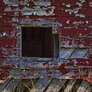 Rustic Barn Red Peeling Paint Poster