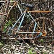 Rusty Wheel Of Bicycle Poster