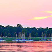 Sail Boats Pretty In Pink  Poster