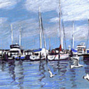 Sailboats And Seagulls Poster