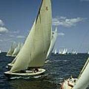 Sailboats Cross A Starting Line Poster