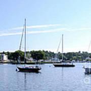 Sailboats In Bay Poster