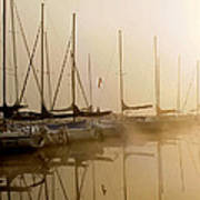 Sailboats In Golden Fog Poster