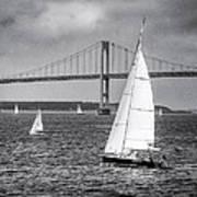 Sailboats Near Bridge Poster
