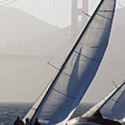Sailboats Race On San Francisco Bay Poster