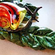 Salad Dressing Poster