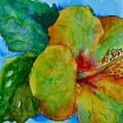 San Diego Hibiscus Study I Underwater Poster