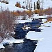 San Juan River At At Last Ranch Poster