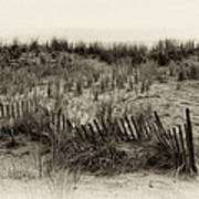 Sand Dune In Sepia Poster