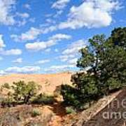 Sandstone Sky Poster by Gary Whitton