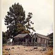 Santa Cruz Barn Poster
