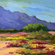 Santa Rosa Mountains In Spring Poster