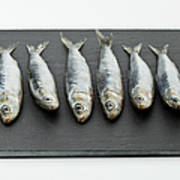 Sardines On Chopping Board Poster