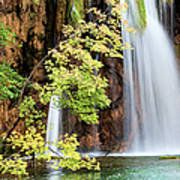 Scenic Waterfall In Autumn Poster
