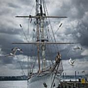 Schooner In Halifax Harbor Poster