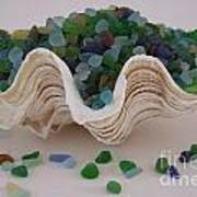 Sea Glass In Clam Shell - No 1 Poster