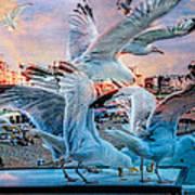 Seagulls On Brighton Pier Poster