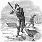 Seal Hunting, 1867 Poster