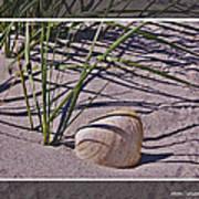 Seashore Scene Poster
