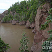 Seastacks At Hopewell Rocks Poster