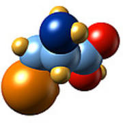 Selenocysteine, Molecular Model Poster