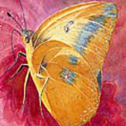 Self Esteem Butterfly Poster