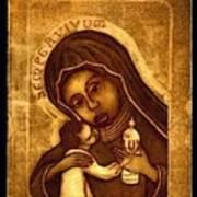 Sempervivum Poster