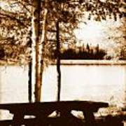 Sepia Picnic Table Lll Poster
