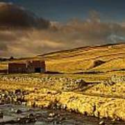 Shed In The Yorkshire Dales, England Poster