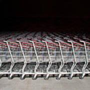 Shopping Carts Poster