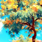 Shower Trees Poster