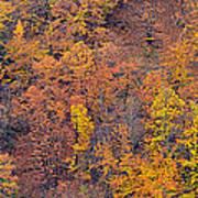 Sierra Nevada National Park Poster