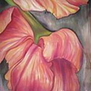 Silky Tulips Poster by Husna Rafath
