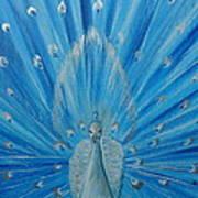 Silver Peacock Poster