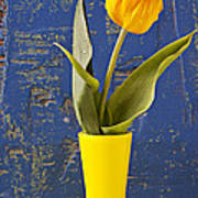 Single Yellow Tulip In Yellow Vase Poster