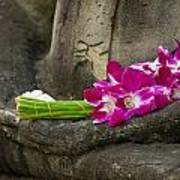 Sitting Buddha In Meditation Position With Fresh Orchid Flowers Poster
